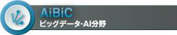AiBiC ビッグデータ・AI分野